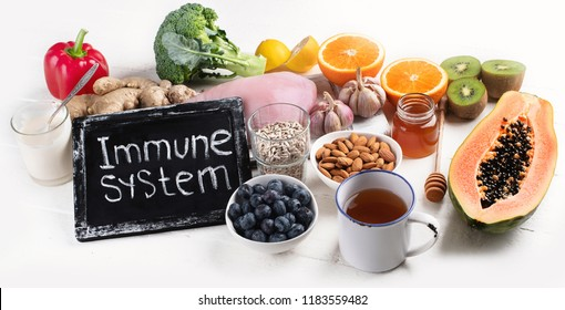 Immunity Images, Stock Photos & Vectors | Shutterstock