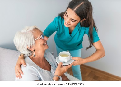 Health visitor and a senior woman during home visit. Dementia and Occupational Therapy - Home caregiver and  woman. Nurse and senior woman having fun together while sitting on sofa and drinking tea