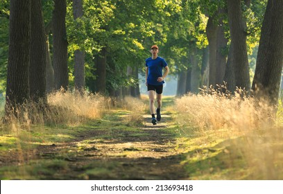 Healthy active lifestyle middle aged man trail running in a lane of tree's on a sunny morning.