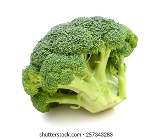 healthy broccoli on white background