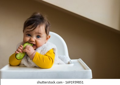 Healthy cute caucasian baby boy have, eat vegan raw supplementary food at home in his highchair with cucumber. Vegan infant concept.