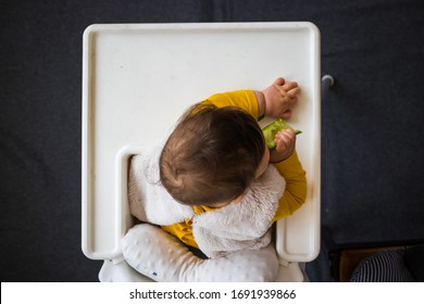 Healthy cute caucasian baby boy have, eat vegan raw supplementary food at home in his highchair. Vegan infant concept. Top above, flat lay view