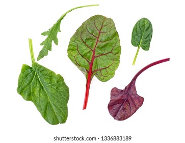 Healthy and diet food - salad mix with rucola, spinach, leaves of red chard and leaves of bulls blood on white background. Top view.