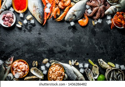 Healthy diet of seafood on ice. On black rustic background