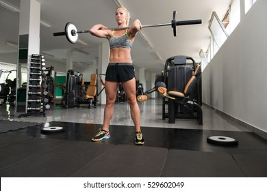 Healthy Fitness Woman Working Out Legs With Barbell In A Gym - Squat Exercise