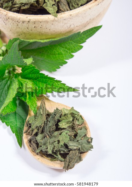 Healthy food, healing herbs, alternative herbal medicine concept.