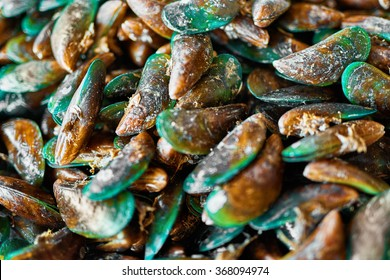 Healthy Food. Seafood Background. Closeup Of Fresh Gourmet Asian Green Mussels ( Perna Viridis, Green-lipped Mussels, Oysters ) At Fish Market In Koh Samui, Thailand, Asia. Nutrition And Diet.