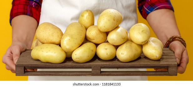 Healthy food to your table. Closeup on modern woman farmer wearing apron isolated on yellow showing potatoes