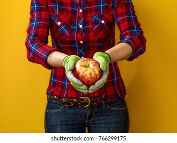 Healthy food to your table. Closeup on modern woman grower in checkered shirt on yellow background showing an apple