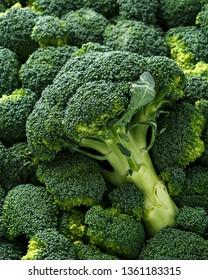 Healthy Fresh Green raw Broccoli. background, texture.