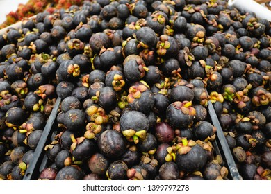 Healthy fruits Red mangosteen background, dark mangosteen, dark mangosteen in a supermarket local market bunch of mangosteen ready to eat