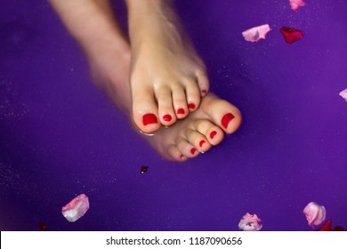 Healthy gorgeous girl feet with red nails soaking in natural foot bath of lavender and plum extract, rose flower petals in colourful purple water background, women luxury relax and foot care