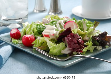 A healthy greed salad with radish and red cabbage