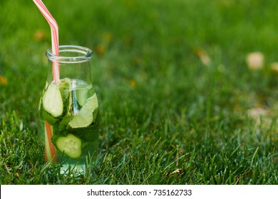 Healthy green detox drink on summer grass. Fresh cold tea jar outdoors. Diet or healthy lifestyle concept
