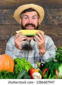 Healthy lifestyle. Homegrown organic harvest benefits. Farmer hold corncob or maize wooden background. Farmer presenting organic homegrown vegetables. Grow organic crops. Community gardens and farms.