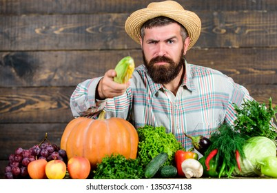 Healthy lifestyle. Man with beard wooden background. Become organic farmer. Farmer with organic homegrown vegetables. Grow organic crops. Community gardens and farms. Homegrown organic food.