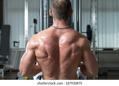 Healthy Male Doing Back Exercises In The Gym