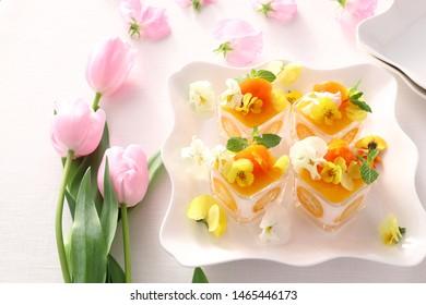 Healthy milk jelly with fresh kumquat and kumquat compote