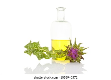 Healthy milk thistle oil in glass bottle isolated on white background. Healty medicinal plant.