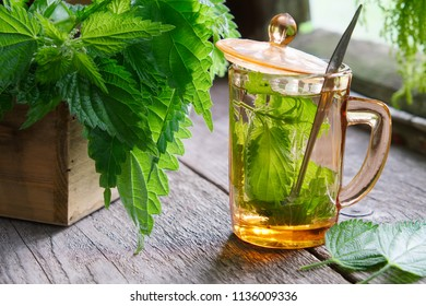 Healthy nettle tea or infusion and nettle herbs on wooden table in a retro village house.