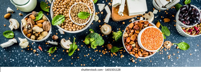 Healthy plant vegan food, veggie protein sources: Tofu, vegan milk, beans, lentils, nuts, soy milk, spinach and seeds. Dark blue concrete background copy space banner