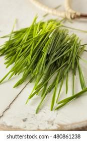 Healthy Raw Green Wheat Grass Freshly Cut