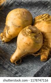 Healthy Raw Organic Brown Rutabaga Root Vegetables
