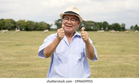 Healthy senior man presenting himself happily enjoying holiday with family.