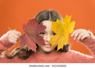 Healthy skin. How amazing autumn is. Little child cover face with maple leaves. Small girl smiling with autumn leaves. Skincare for young skin. Autumn beauty. Natural beauty. Happy autumn season.