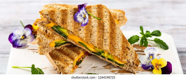 Healthy toasts with avocado, cheddar cheese and tomatoes for breakfast or lunch. Vegetarian sandwiches. Plant-based diet. Whole food concept. Banner.