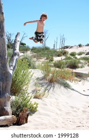 Healthy young boy leaping out of a high tree on the beach during summer vacation or holiday