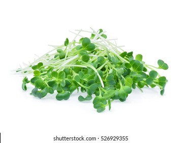 heap of alfalfa sprouts on white background
