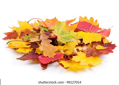 Heap of autumnal leaves. Isolated on a white.