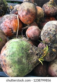 A heap of beets in the box