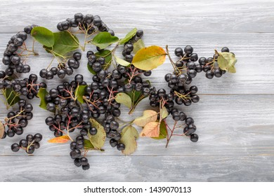 Heap of black chokeberry berries ( Aronia melanocarpa ) on gray wooden table. Top view. Copy space. Food background.