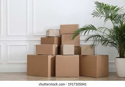 Heap of cardboard boxes and houseplant near white wall indoors. Moving day