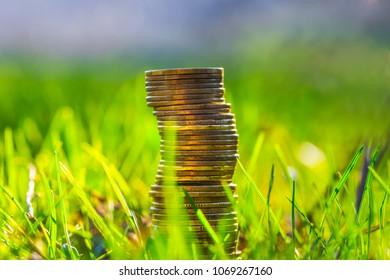 heap of coin in a fresh green grass