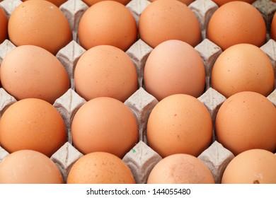 Heap of farm egg