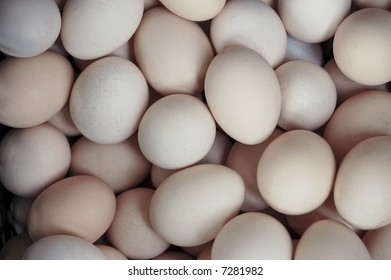 Bazaar Hard-Boiled Egg without Shell Cooker Egg Separator