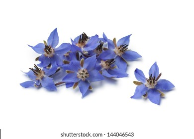 Heap of fresh blue borage flowers for decoration isolated at white background