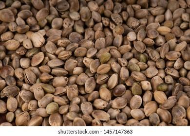 heap of fresh cannabis seeds background