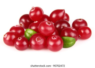 Heap of fresh cranberry. Use it for a health and nutrition concept.