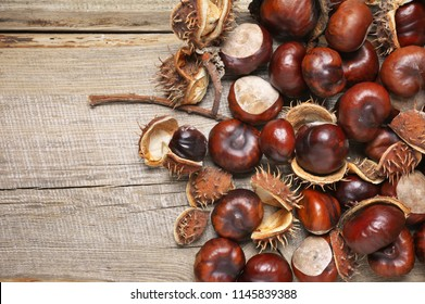 Heap of fresh horse chestnuts close-up on rustic wooden background. Top view point.