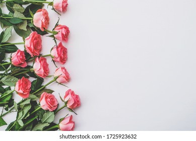 Heap of fresh pink roses in full bloom on white background, close up. Bunch of flowers. Copy space. Top view, flat lay. Valentine's day or Mother's day, love concept.