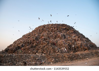 A heap of garbage waste at the Tekhand landfill site in New Delhi, India. Delhi generates about 9,000MT of waste on a daily basis and it is a challenge for government to deal with it.