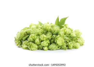 Heap of green hop isolated on white background