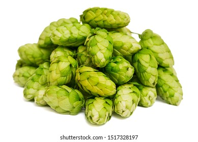 Heap of green hop isolated on white background. Pile of hops, ingredient for brewery industry.