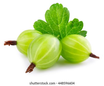 Heap of green ripe gooseberry with leaf  isolated on white background
