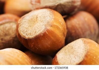 The heap of hazelnuts