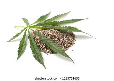 Heap of hemp seeds with hemp leaf on white background. Cannabis Sativa.